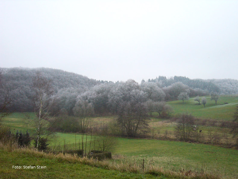 Blick ins Tal bei Frost